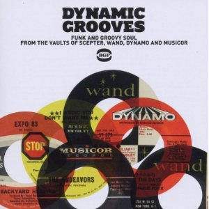 dynamic_grooves