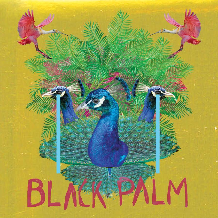 black_palm